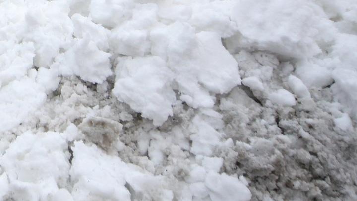 Гренландия теряет ледяную корку: Учёные боятся за местных жителей