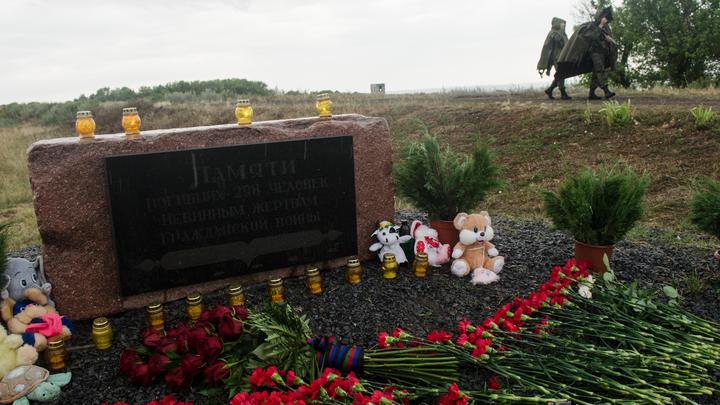 Придётся отдуваться: На ком повиснут огрехи следствия по MH17?