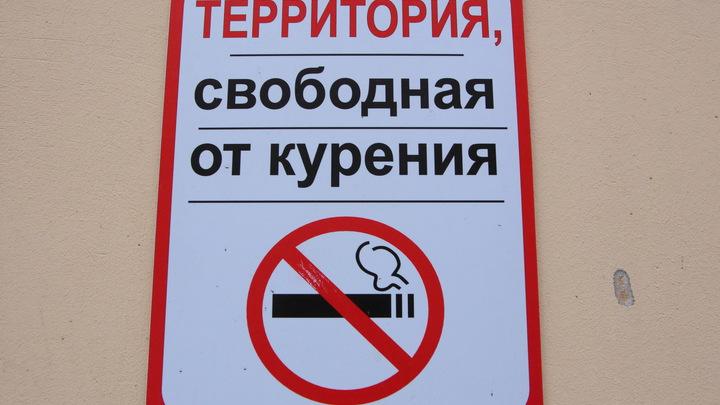 В десятки раз опаснее сигарет: В Санкт-Петербурге запретили продажу снюса детям