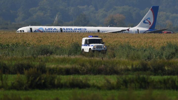 Автобус посылать или не нужно?: Пассажиров А321 едва не бросили в кукурузном поле - переговоры диспетчеров