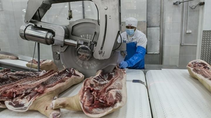 В Чите торговали замороженной свининой, загрязнённой кишечной палочкой