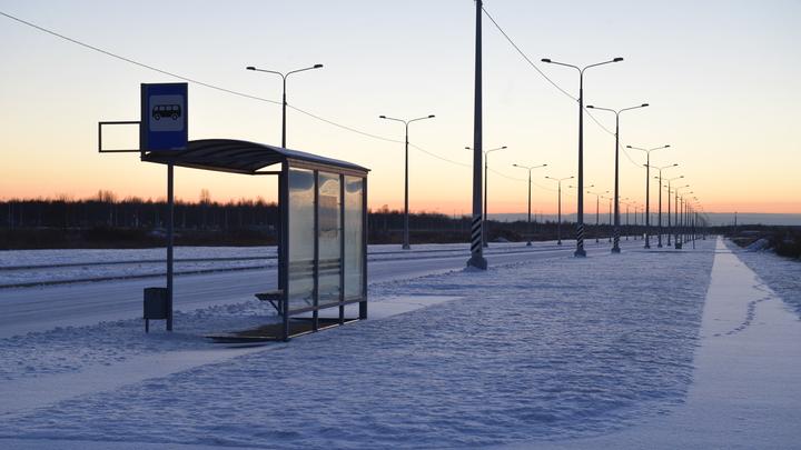 Экологичное Подмосковье: В регионе начали курсировать новые автобусы на газовом топливе