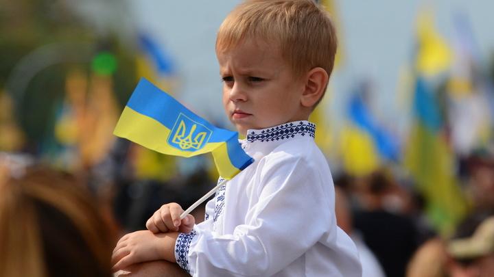 Во имя своих детей и внуков: В Госдуме дали совет украинцам после заявления Зеленского о Донбассе
