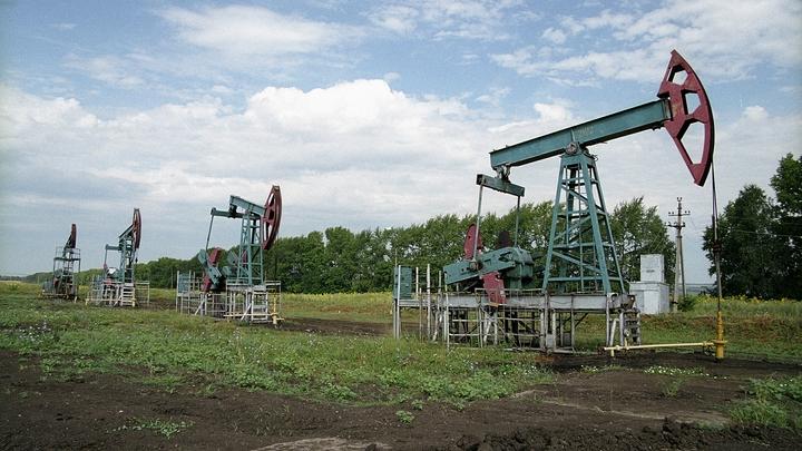 Если США согласятся. Россия приготовилась сократить добычу нефти - Минэнерго