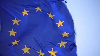 Защитники прав русских пожаловались в Совет Европы на беспредел Латвии