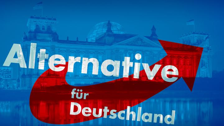 Альтернатива для Германии стала яснее