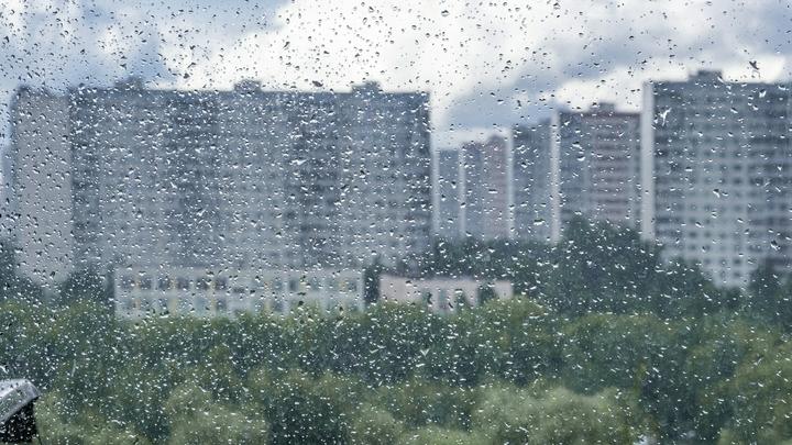 Похолодание вышло на пик. Суббота удивит петербуржцев температурой ниже нормы