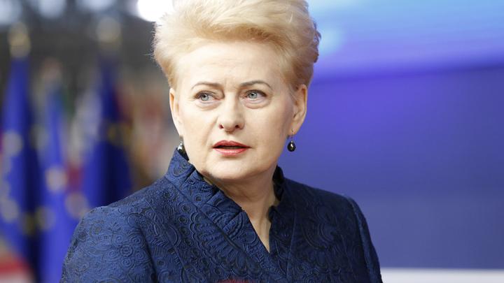 Спасибо за оккупацию: Президент Литвы расцеловала руки НАТО за ввод новых войск