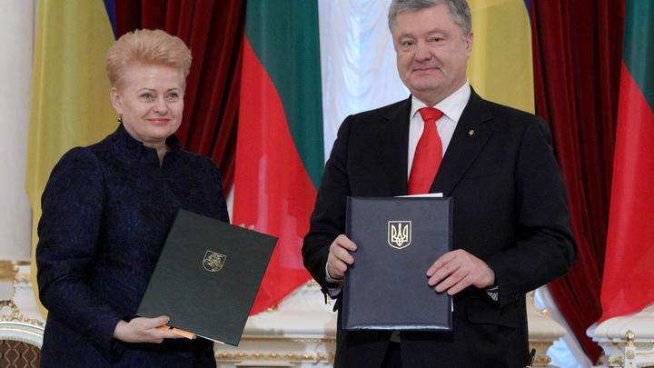 Порошенко получил высшую госнаграду Литвы