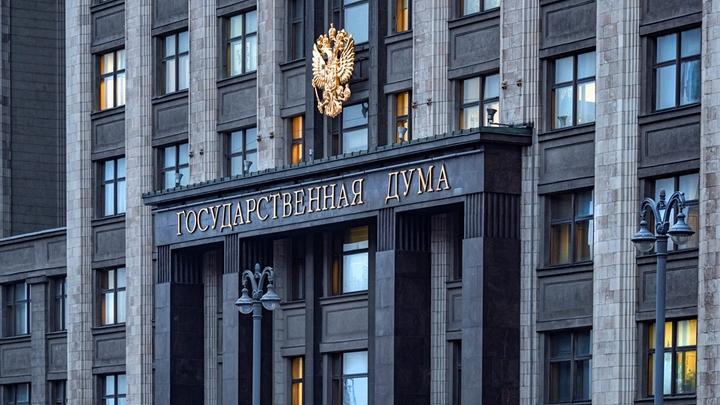Беби-боксов в России не будет: В Госдуме выступили против закона, внесённого три года назад