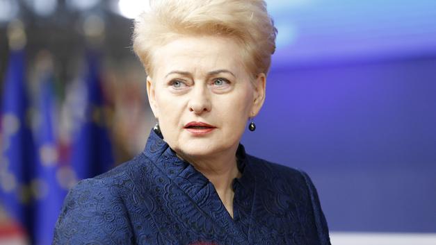 Паранойя президента Литвы: Россия в течение 48 часов атакует Польшу, Прибалтику и Арктику