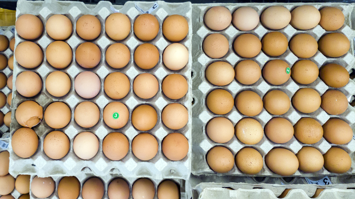 Яйца, шиповник, морковь: В чём содержится витамин, способный защитить от рака кожи?
