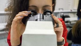 Ученые нашли способ дешево и надежно находить рак и врожденные болезни