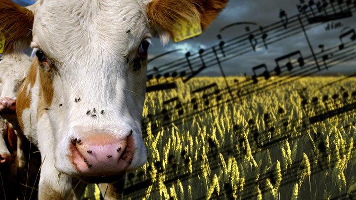 Песни о главном: «Аграрные лобби», Дворкович и передел АПК России
