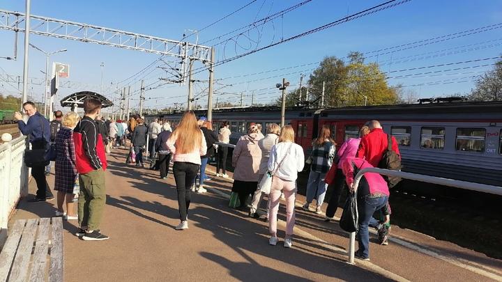 В Петербурге увеличат число электричек в Выборгском и Приозерском направлениях после давки в поездах