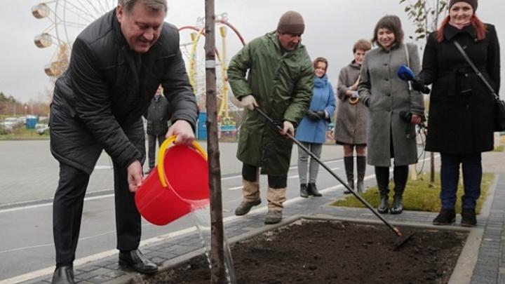 Мэр Новосибирска попросил у губернатора разрешения провести субботник