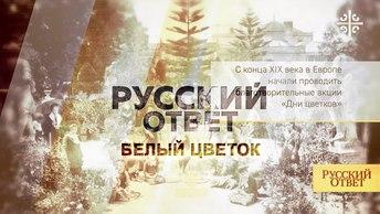 Белый цветок: традиции благотворительности в России [Русский ответ]