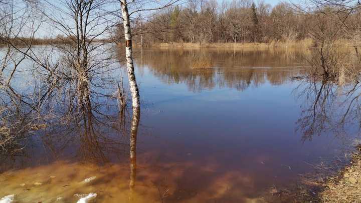 Паводок: Ока в Муроме поднялась на четыре с половиной метра