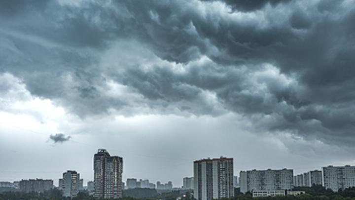 МЧС предупредило новосибирцев о штормовом ветре до 23 м/с