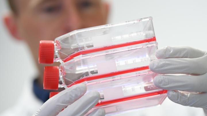 Учёные нашли предателя среди антител, борющихся с коронавирусом