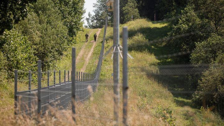 Не рассчитали: У Литвы закончилась дефицитная колючая проволока для забора на границе с Беларусью