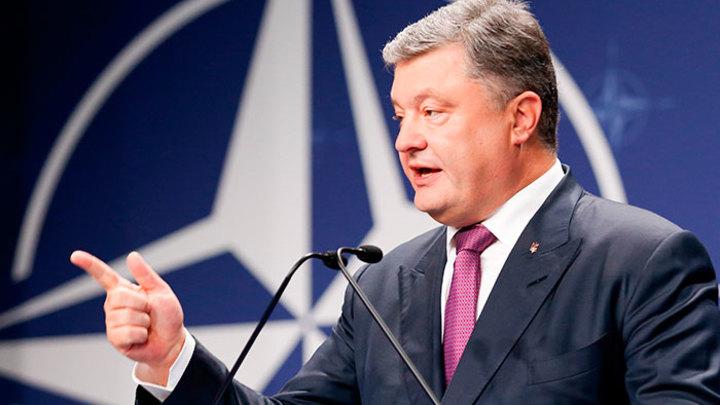 Чем сдержаннее НАТО, тем жальче Киев
