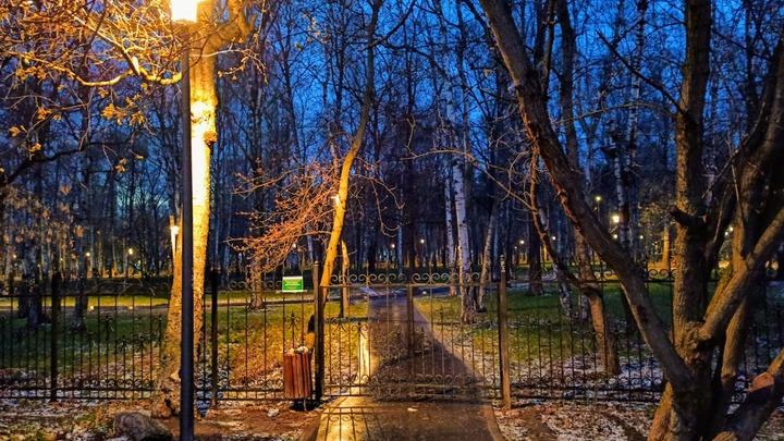 Освободился, но не исправился: Скопинскому маньяку запретили гулять по ночам