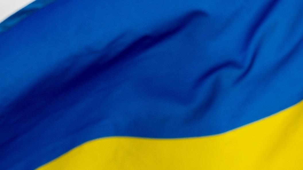 Скандальный депутат Парасюк избил всуде полицейского— Беспредел вгосударстве Украина