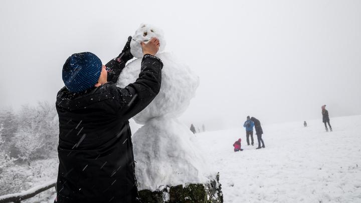 Сугробы отменяются: Гидрометцентр призвал москвичей не запасаться морковкой для снеговиков