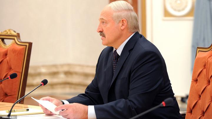 Нечего скрывать: Лукашенко пригласил НАТО на совместные учения РФ и Белоруссии