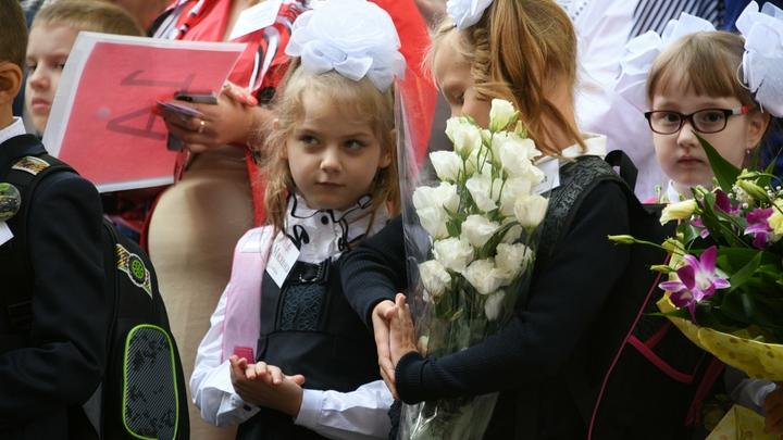 Линейки отменить - за парты посадить: каким будет школьный учебный год в России