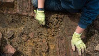 Кладбище 13 века и фрагменты деревянной крепости обнаружили археологи под Смоленском