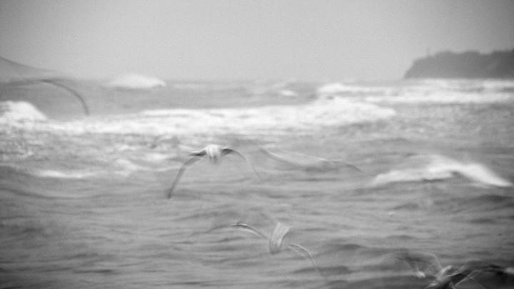 На Таганрогский залив надвигается мощный шторм