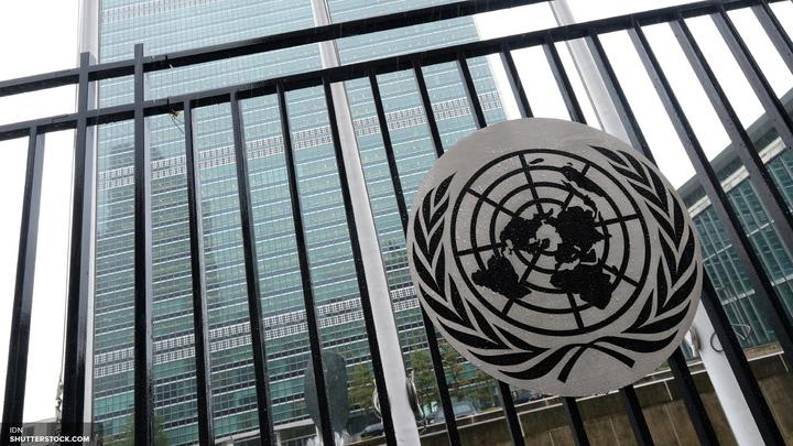 Членам Совбеза ООН дали день на обдумывание резолюции о химатаке в Идлибе