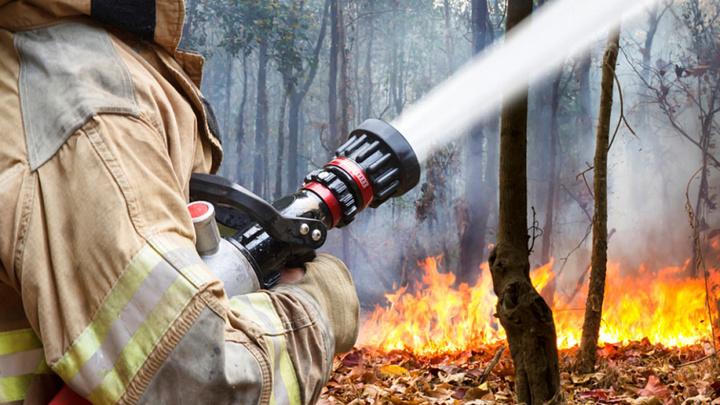 Почти во всех районах Краснодарского края объявлен противопожарный режим