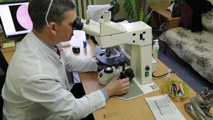 В Зауралье снова коронавирусом заболели 79 человек за сутки