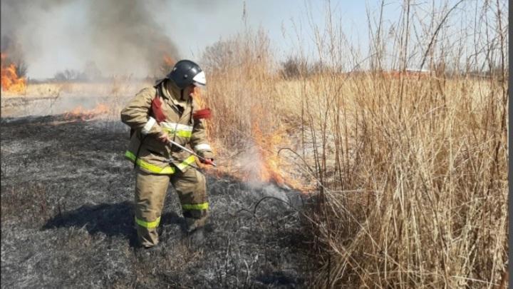 Площадь пожаров в Новосибирской области достигла 150 тысяч гектар