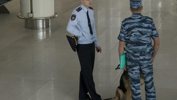 В Санкт-Петербурге уничтожили 167 кг санкционной продукции