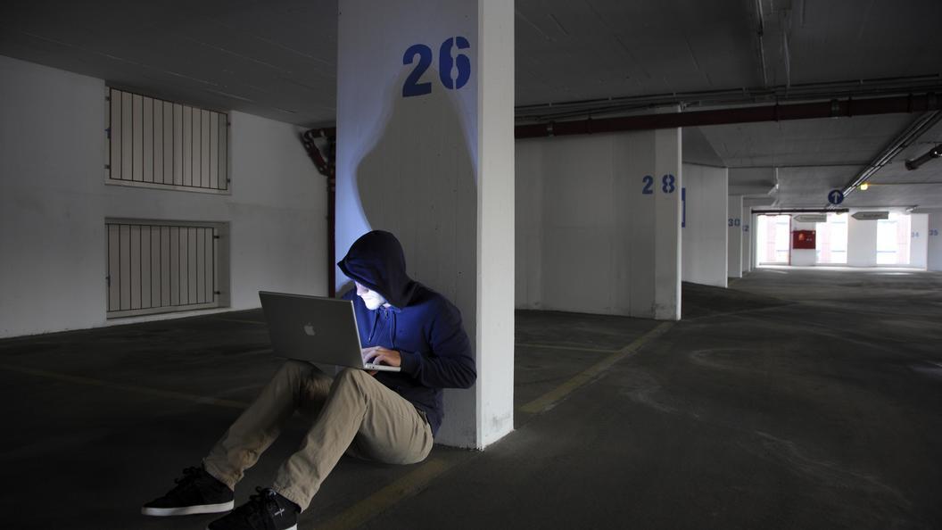 Специалисты МЧС: целями кибератак могут стать электронные кошельки граждан России
