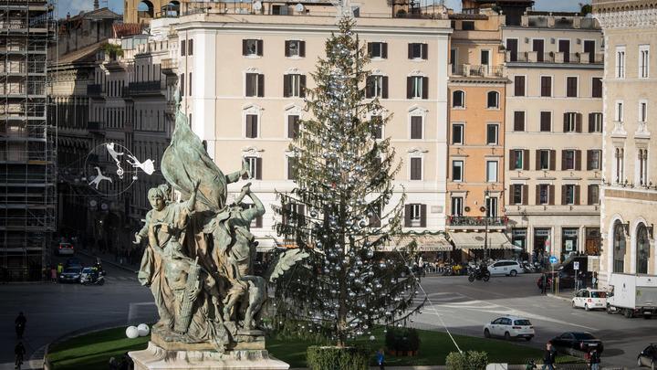 Итальянцы пишут некрологи облезлой ели в центре Рима