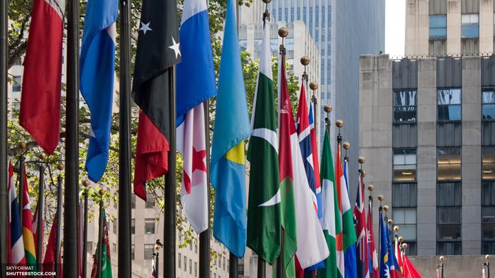 Пять новых стран стали членами Совбеза ООН на два года