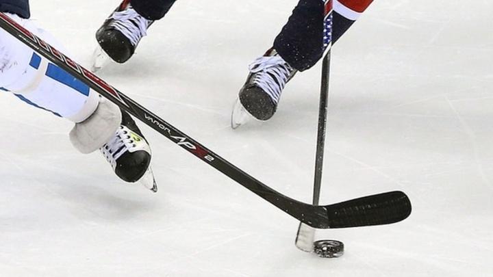 Хоккейные чемпионаты во Владимирской области пройдут без зрителей