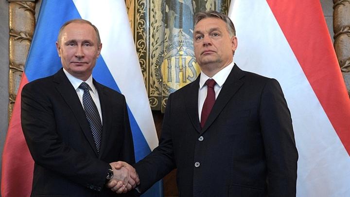Путин проводит разговор в узком формате с главой кабмина Венгрии Орбаном