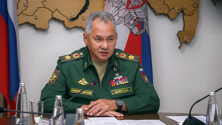 Чехия приняла план спасения России по версии Шойгу