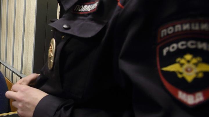 Поленом по хребту: В Ростове народным методом усмирили агрессивного мужчину с кинжалом