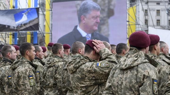 Потерь нет? Заявления Украины о погибших в Донбассе не выдерживают критики