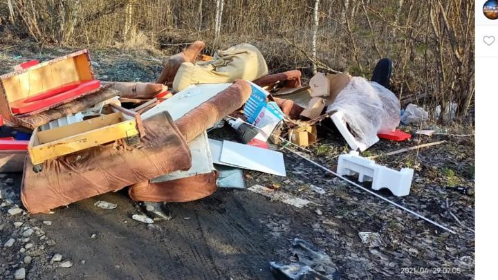 «Ваш мусор нашелся в лесу»: жители Петербурга ткнули чиновников в их барахло