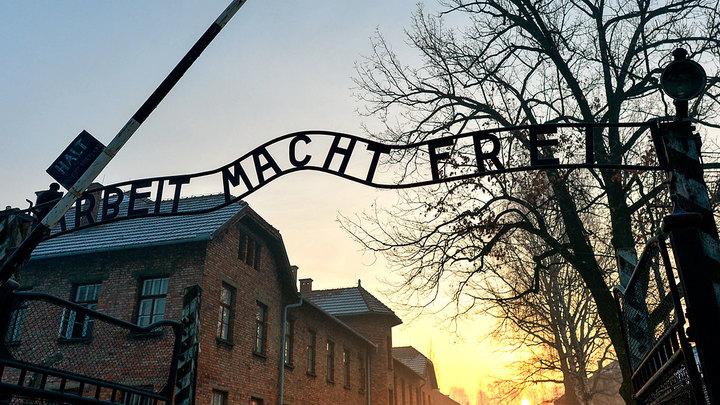 За голую акцию в бывшем концлагере Освенцим дали реальные сроки