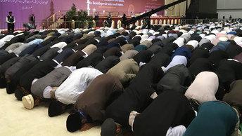 В Германии сформированы две дивизии радикальных исламистов
