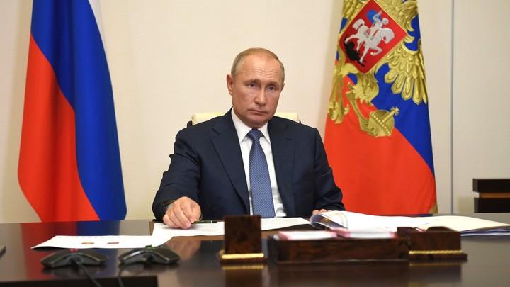 Путин рассказал о дистанционном образовании в России: Не заменит традиционное, но...